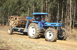 Mabandla tractor carrying timber