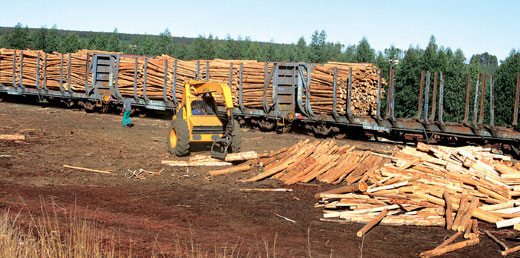 Timber transported by rail in SA