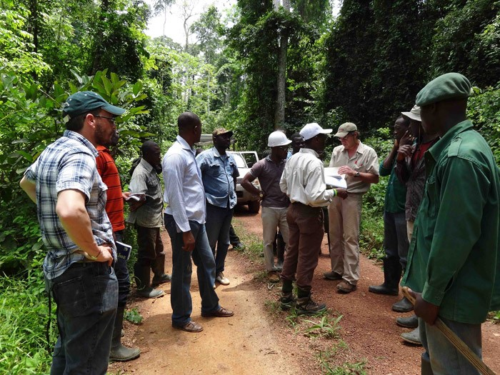Training-of-legality-verification-auditors-of-the-Forestry-Commission-in-Ghana-copy