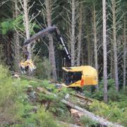 6-steep-slope-harvesting
