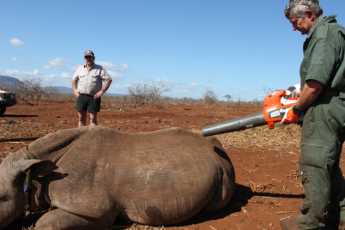 husqvarna-rhino-de-horning-aug-2016-2-2