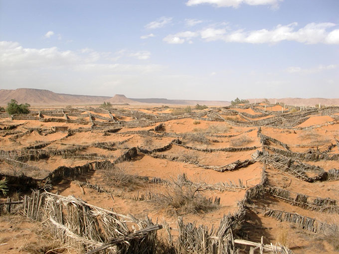 anti_desertification_sand_fences_south_of_the_town_of_erfoud_morocco