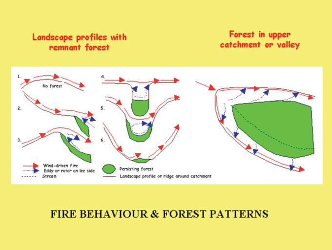 fire-behaviour-1