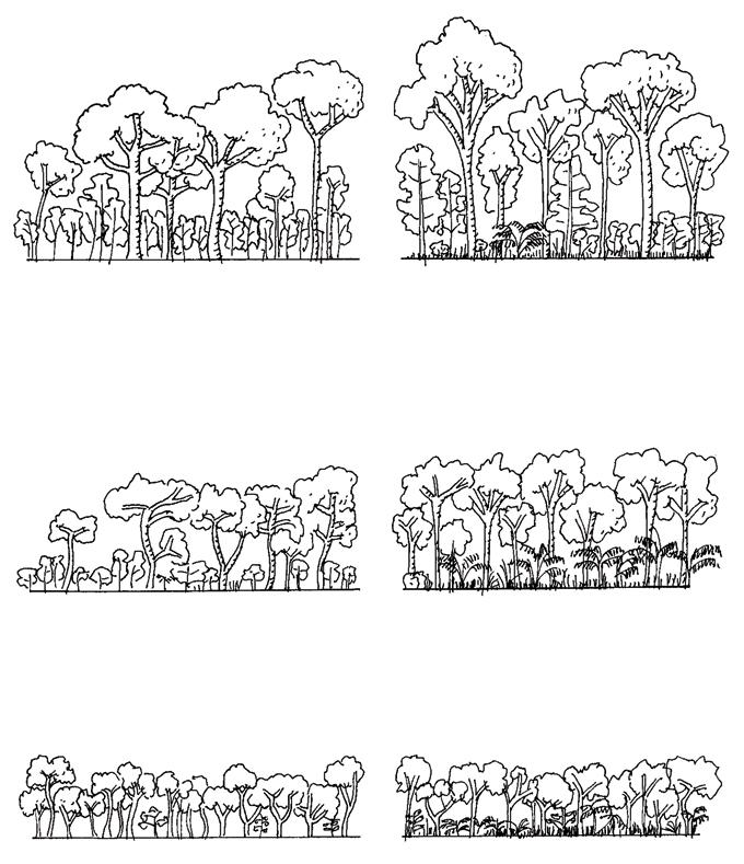 woudtipes-copy